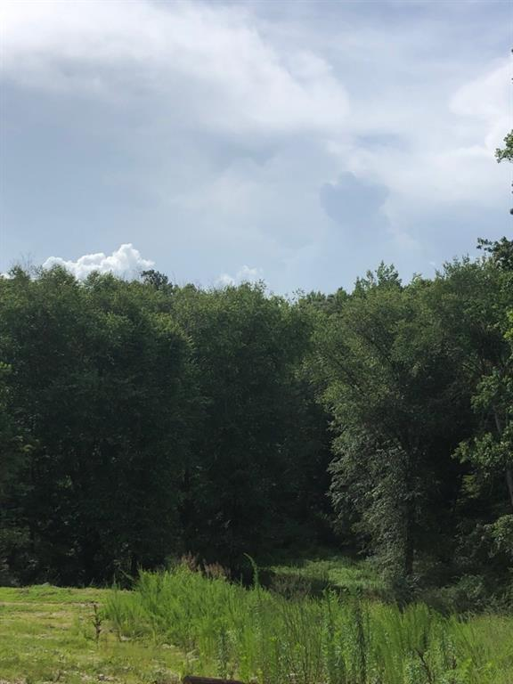 0 Cowan Ridge Drive - Photo 1