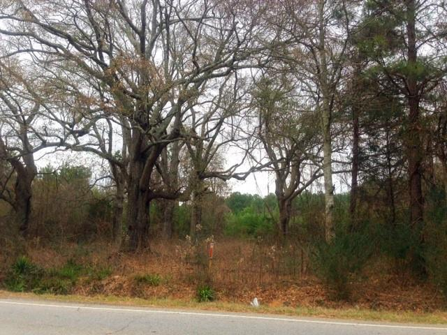511 Ga Hwy 3 Old Dixie Highway, Hampton, GA 30228 (MLS #6581205) :: North Atlanta Home Team