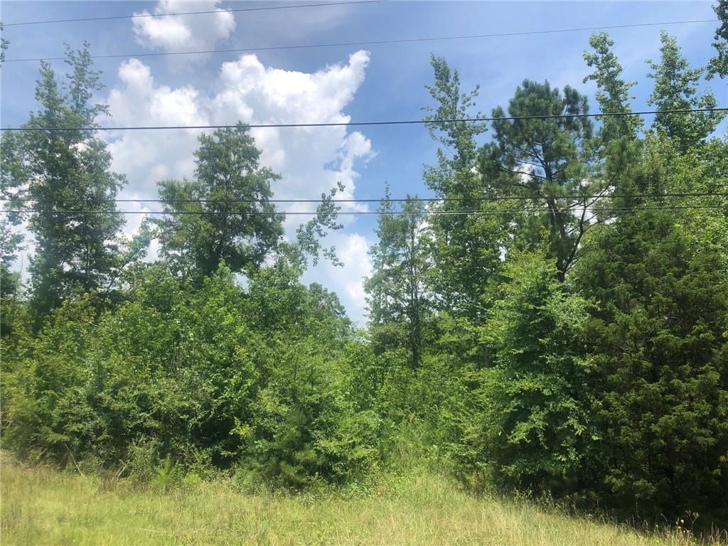 0 Piedmont Highway - Photo 1