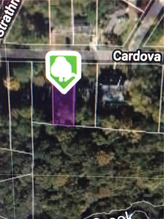 909 NE Cardova Drive, Atlanta, GA 30324 (MLS #6586518) :: North Atlanta Home Team