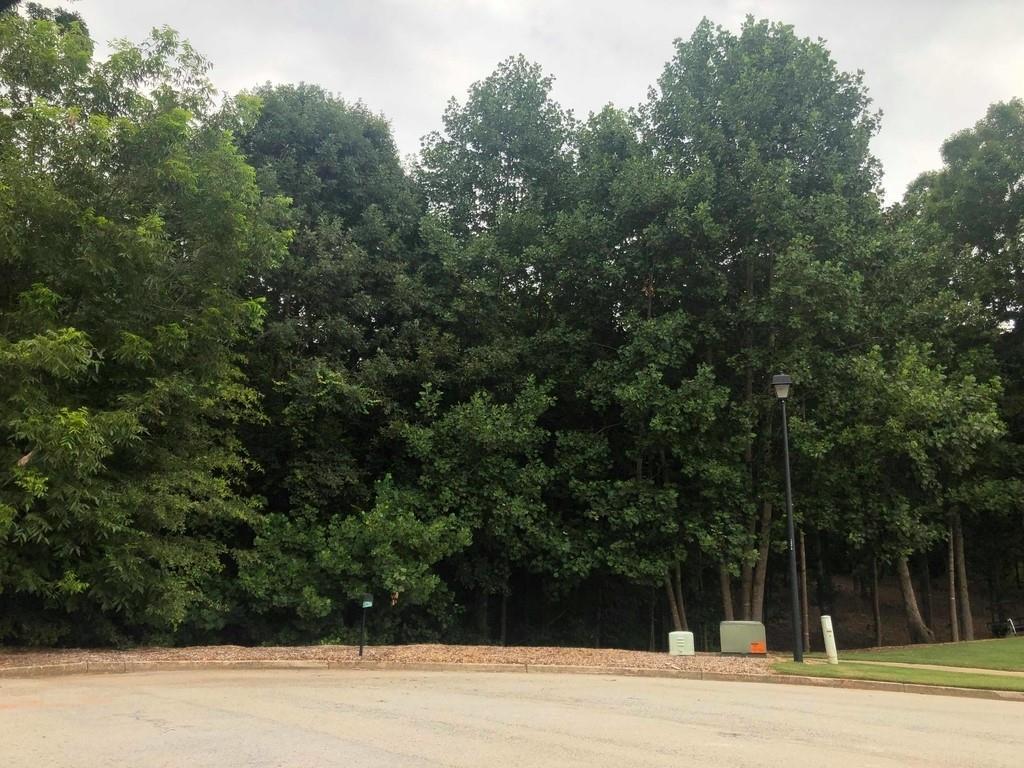 52 Meadow Oak Court - Photo 1