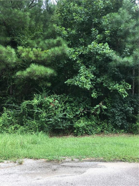 98 Teepee Trail, Whitesburg, GA 30185 (MLS #6592946) :: North Atlanta Home Team
