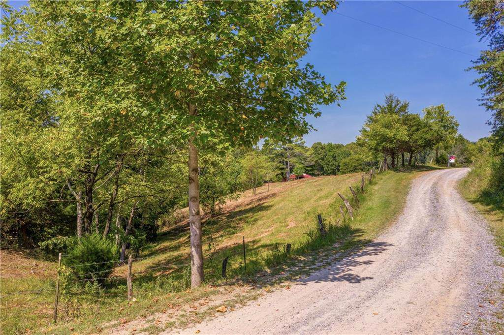 0 Dry Pond Road - Photo 1