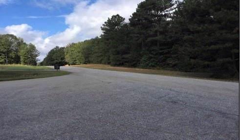 200 Green Meadow Lane, Fayetteville, GA 30215 (MLS #6603313) :: Path & Post Real Estate