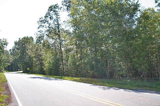 00 Castleberry Bridge Road, Dawsonville, GA 30534 (MLS #6612975) :: Path & Post Real Estate