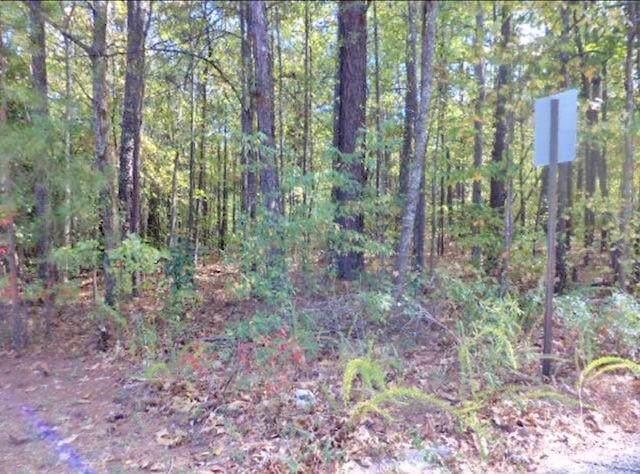 0 Timber Lane Drive, Douglasville, GA 30134 (MLS #6621513) :: North Atlanta Home Team