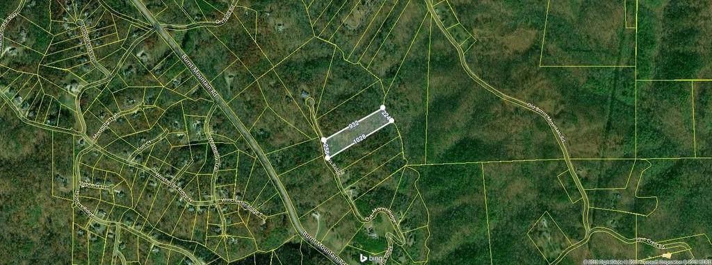 0000 Oak Morris Ridge - Photo 1