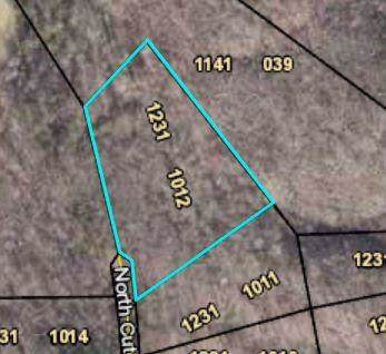 1012 N Cut Lane, Ranger, GA 30734 (MLS #6631643) :: The North Georgia Group