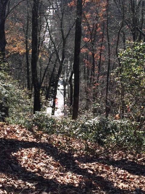 0 Mountain Falls Loop - Photo 1