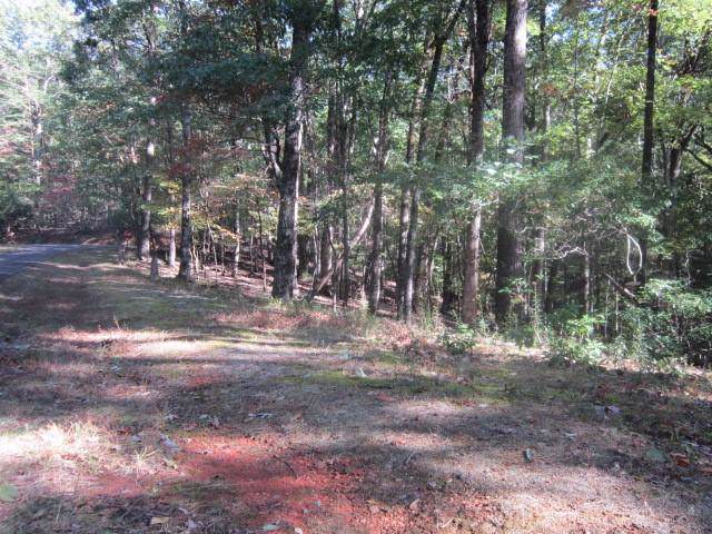 3583 Coffee Cove Section Court, Jasper, GA 30143 (MLS #6634904) :: The Heyl Group at Keller Williams