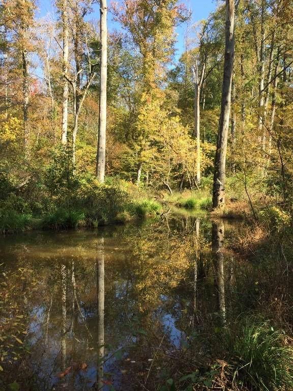 0 Wendy Hill Road, Monticello, GA 31064 (MLS #6639391) :: Rock River Realty