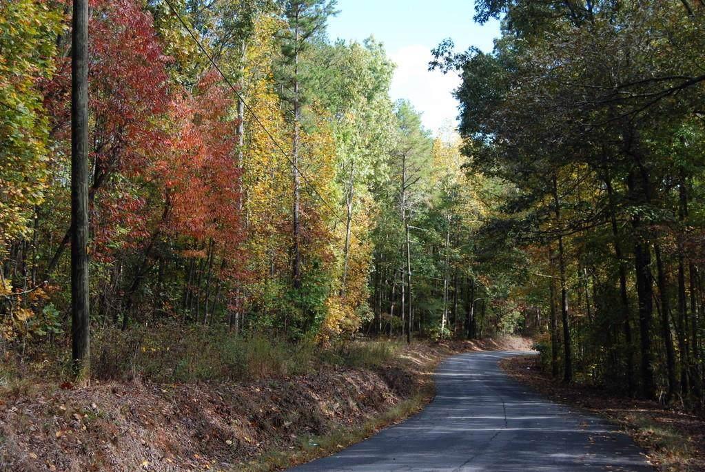 0 Chattin Drive - Photo 1