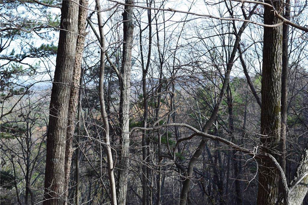 2107 Mcelroy Mountain Drive - Photo 1