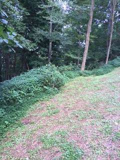 103A Moorewood Circle, Other-North Carolina, NC 28741 (MLS #6646315) :: North Atlanta Home Team