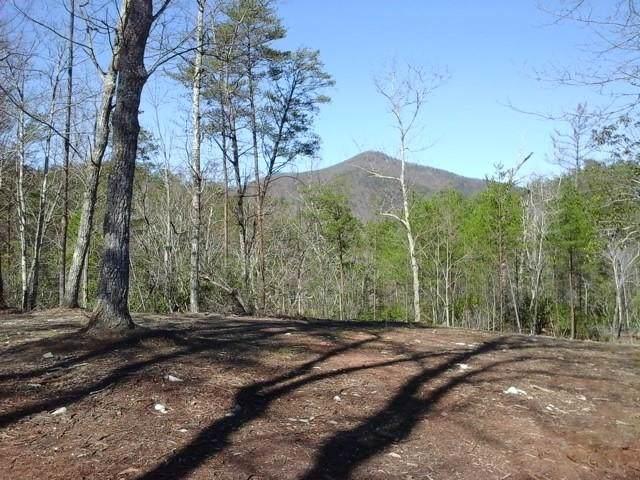 0000 Chimney Mountain Road, Sautee Nacoochee, GA 30571 (MLS #6646545) :: North Atlanta Home Team