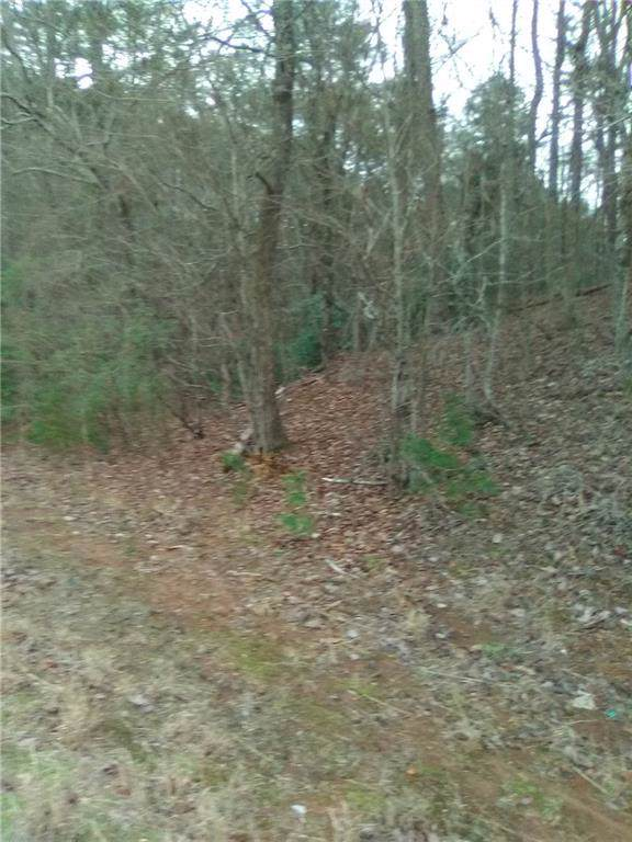 3819 Afton Road, Marble Hill, GA 30148 (MLS #6654477) :: North Atlanta Home Team