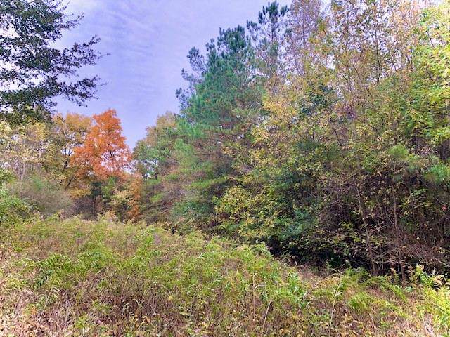 0 Lakeview (5.67 Acres) Drive, Bremen, GA 30110 (MLS #6665231) :: Kennesaw Life Real Estate