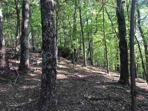 2613 Stone Ridge Court, Jasper, GA 30143 (MLS #6672276) :: Path & Post Real Estate