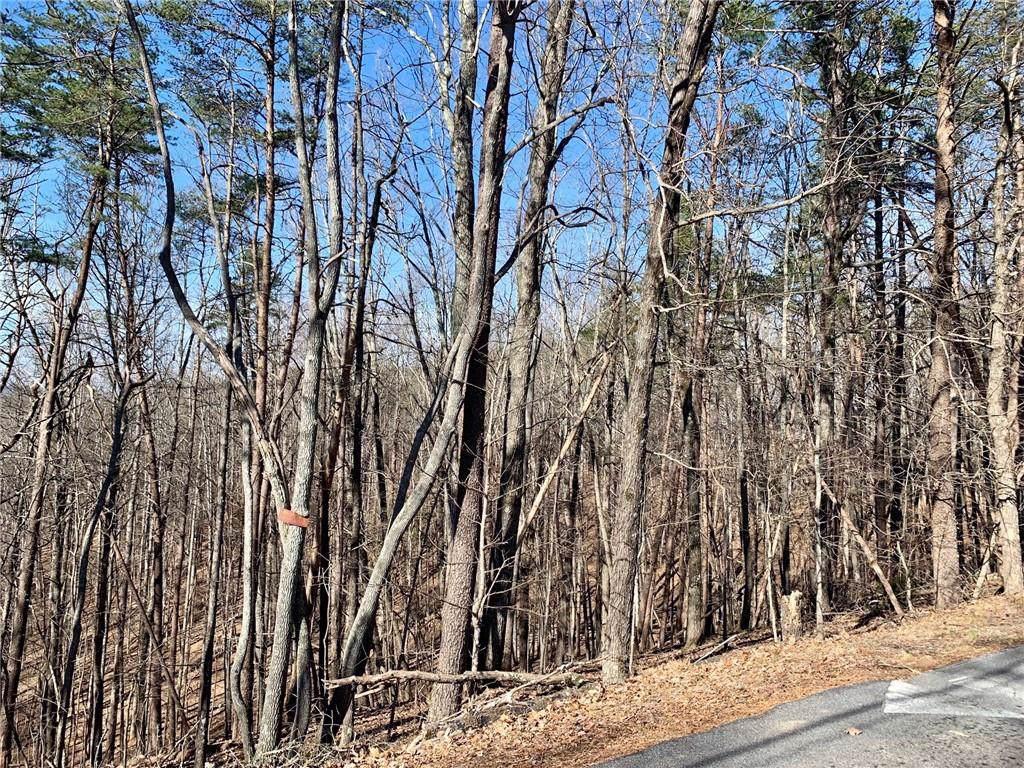 450 Calhoun Road - Photo 1