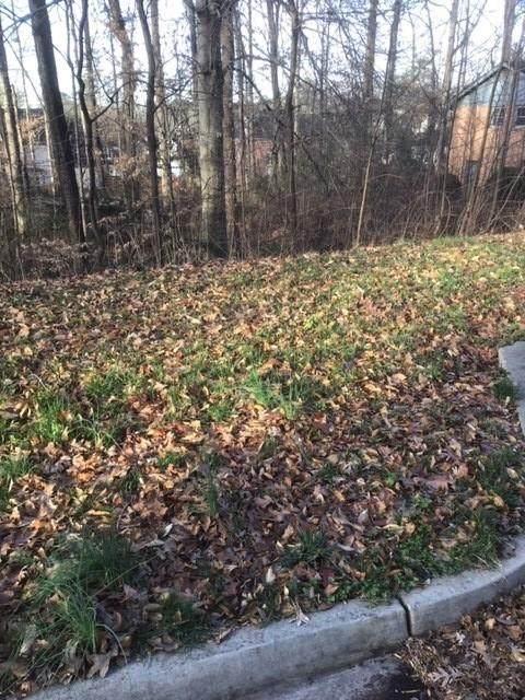 1625 Rambling Woods Drive - Photo 1