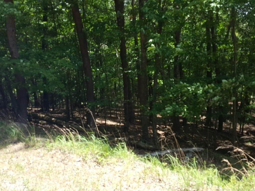 209 Indian Oak Drive - Photo 1
