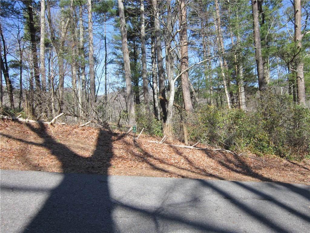 629 Blue Pine Court - Photo 1