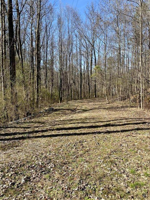 1299 Curtis Road, Canton, GA 30115 (MLS #6683680) :: Path & Post Real Estate