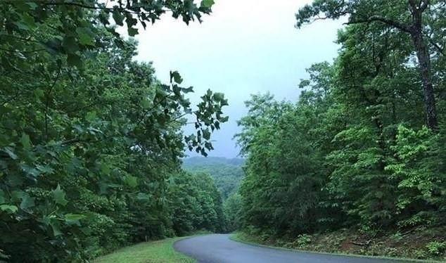0 Northview Parkway, Ellijay, GA 30536 (MLS #6695176) :: Kennesaw Life Real Estate