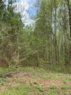 0 Dunwick Lane, Mcdonough, GA 30253 (MLS #6703162) :: MyKB Partners, A Real Estate Knowledge Base