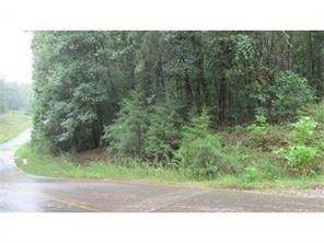 Lot 11 Lakeshore Road, Martin, GA 30557 (MLS #6703623) :: The Heyl Group at Keller Williams