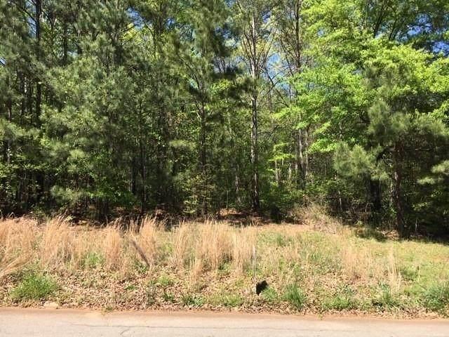 255 Huiet Drive, Mcdonough, GA 30252 (MLS #6706780) :: Todd Lemoine Team