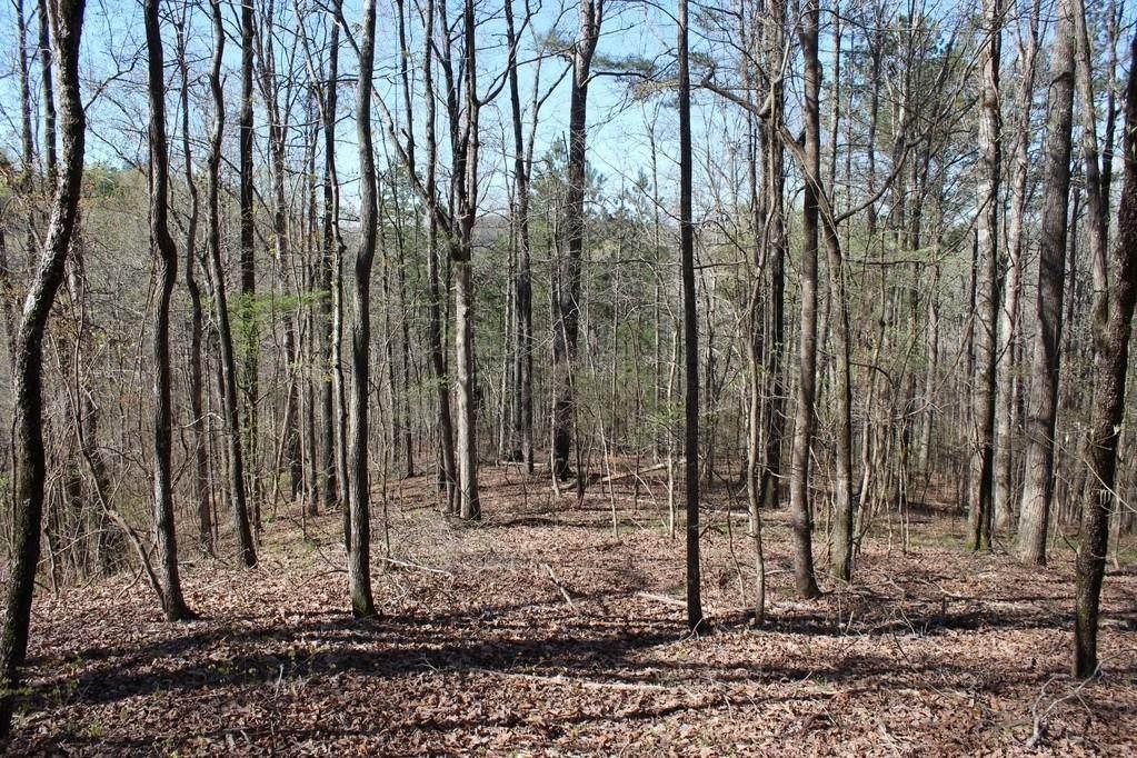 1725 Cherokee Gold Trail - Photo 1