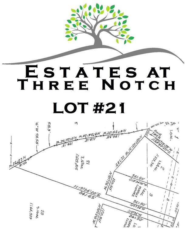 3013 Three Notch Road, Ringgold, GA 30736 (MLS #6709036) :: Thomas Ramon Realty