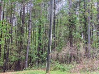 3160 Buck Branch Road - Photo 1