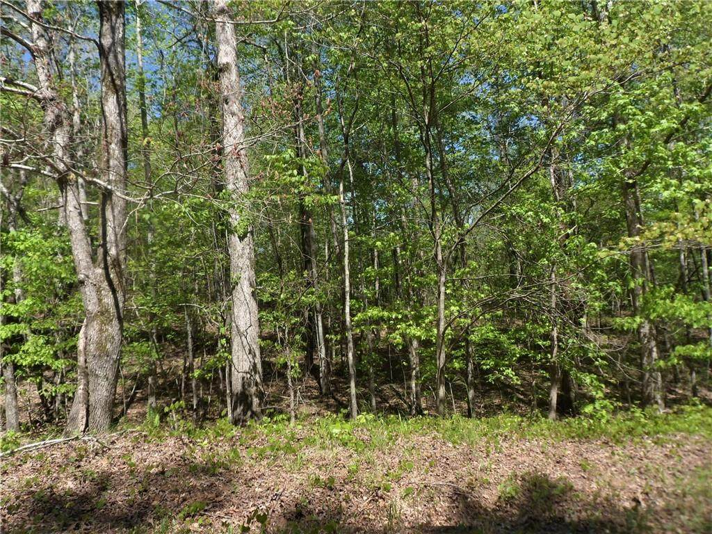 6051 Bear Lake Drive - Photo 1