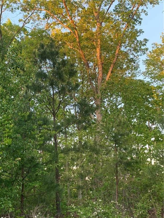 55 Treemont Drive - Photo 1