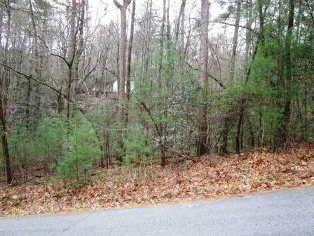 0 Blue Ridge Drive, Sautee Nacoochee, GA 30571 (MLS #6719310) :: The Heyl Group at Keller Williams