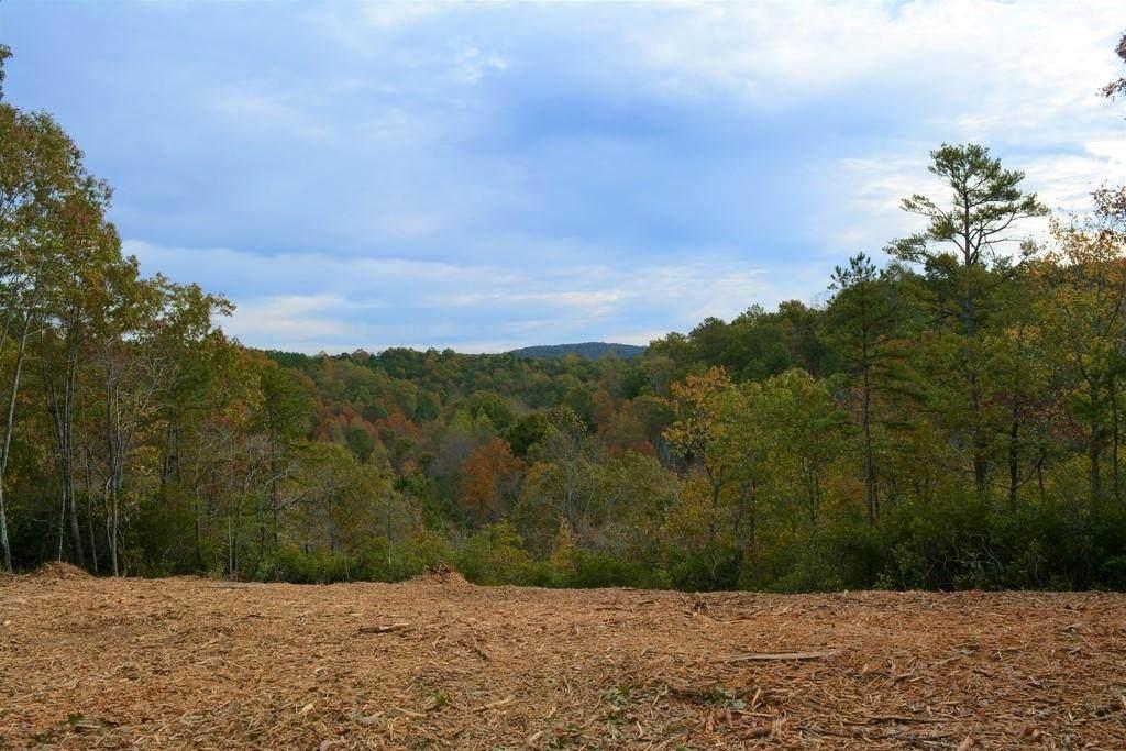 00 Garland Mountain Trail - Photo 1