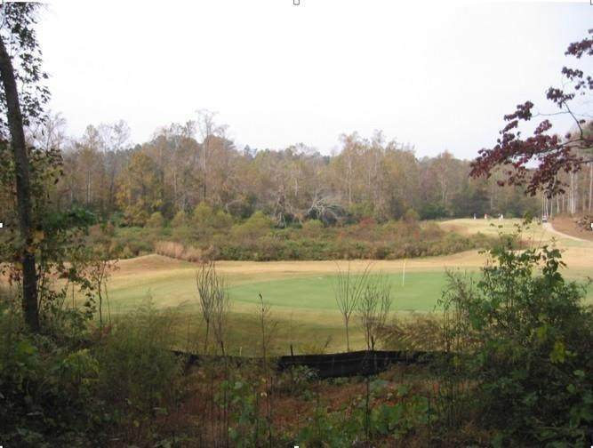 3272 Swamp Willow Court - Photo 1