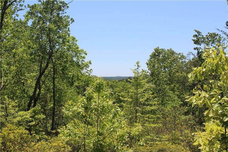 Lot 5 Owl Mountain Trail - Photo 1