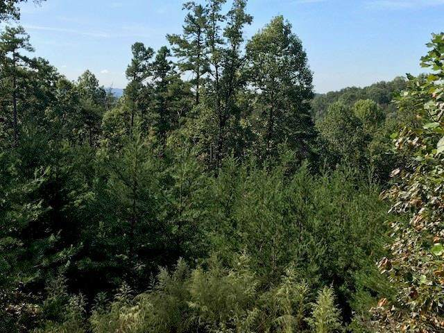 Lot 11 Crown Mountain Way, Dahlonega, GA 30533 (MLS #6723322) :: The Heyl Group at Keller Williams
