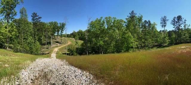0 Old Cartersville Road - Photo 1