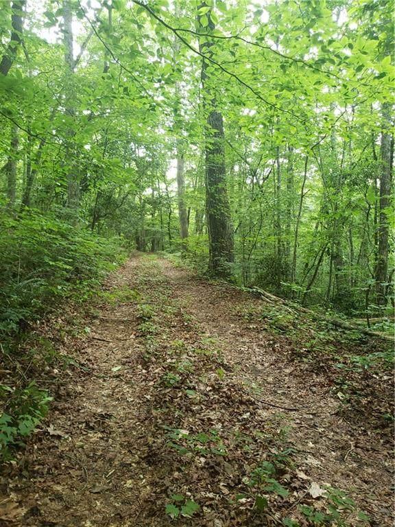 0 Shady Trail Drive, Canton, GA 30114 (MLS #6736351) :: North Atlanta Home Team