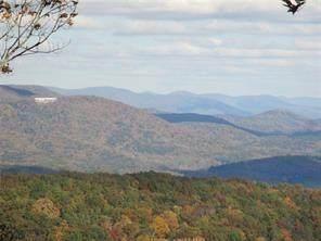 23C Huckleberry Way Way, Jasper, GA 30143 (MLS #6738251) :: North Atlanta Home Team
