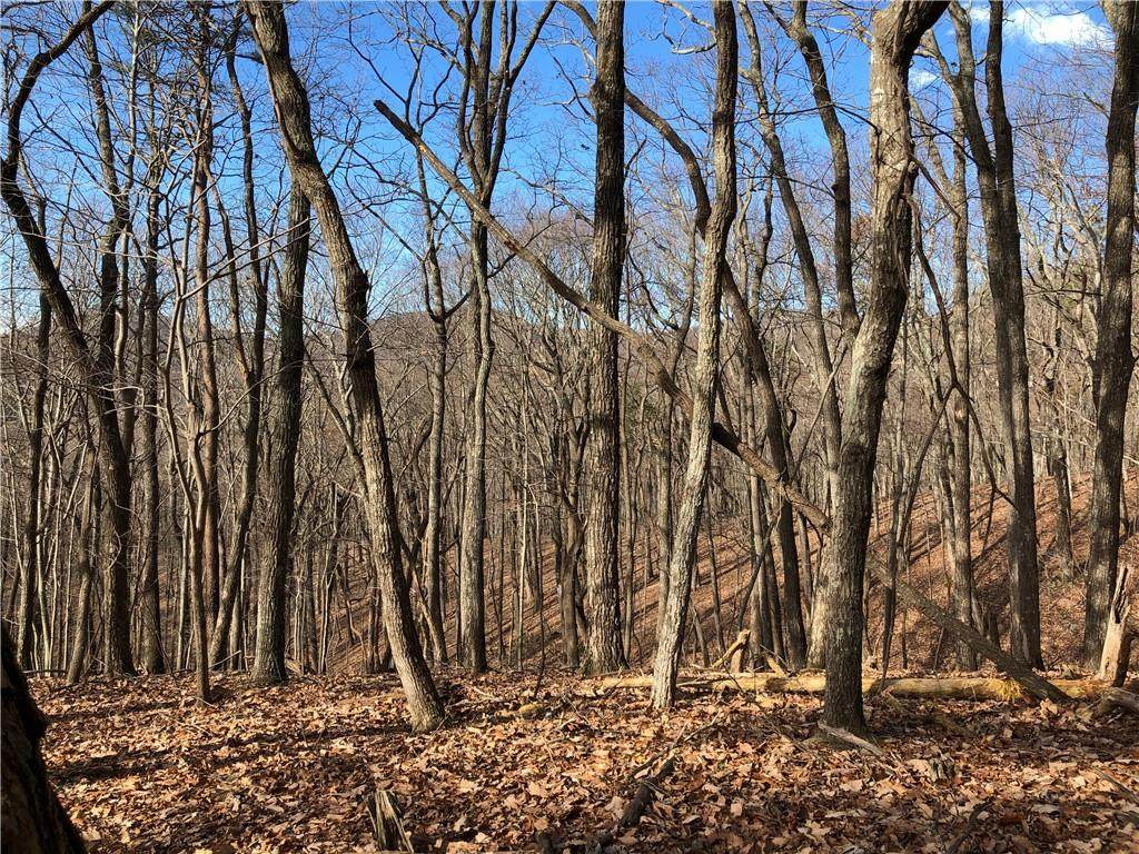 3727 Shadowick Mountain Road - Photo 1