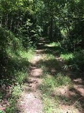 0 Pecks Mill Creek Road, Dahlonega, GA 30533 (MLS #6758951) :: The Heyl Group at Keller Williams