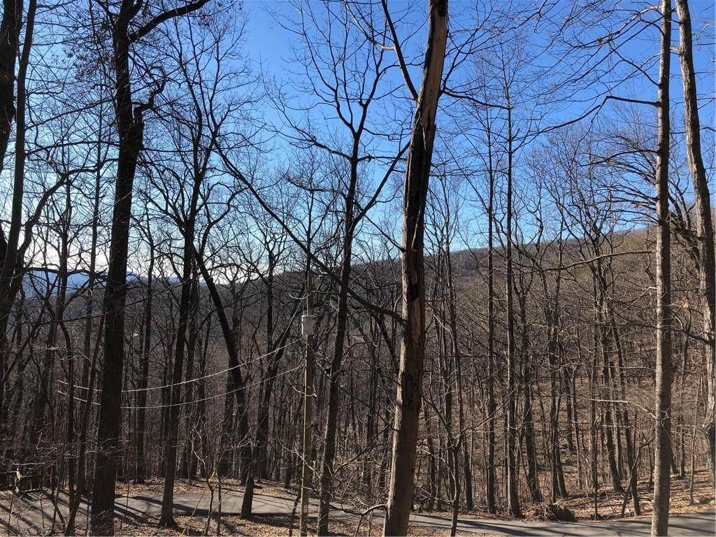 1618 Thunder Ridge - Photo 1