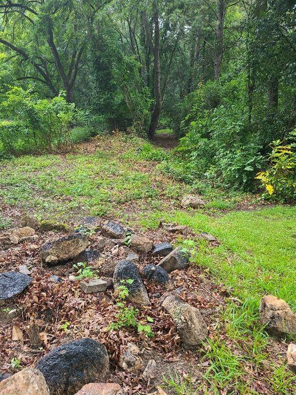 3141 Evans Mill Road - Photo 1
