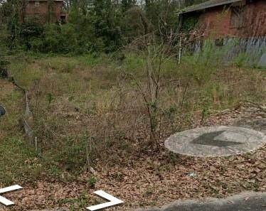 195 Arcadia Circle NW, Atlanta, GA 30314 (MLS #6765525) :: Vicki Dyer Real Estate