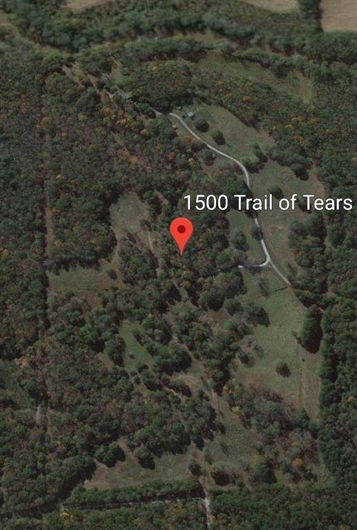 1500 Trail Of Tears Trail, Ball Ground, GA 30107 (MLS #6765959) :: Thomas Ramon Realty